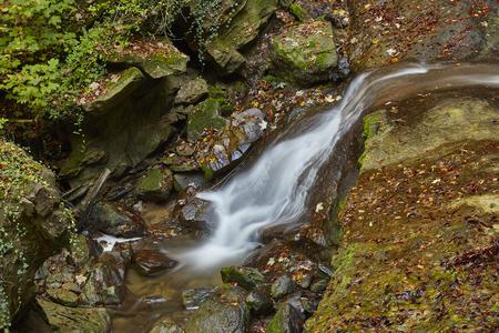 Wasserfall und Rinnsale in Erlenbacher Tobel Schweiz