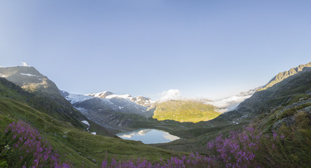 Sustenpass with Stein Glacier, Swiss Alps, Sheeps and Waterfall