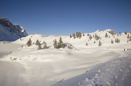 Winter Wonderland, Truebsee Lake, Engelberg, Alps, Switzerland 版權商用圖片