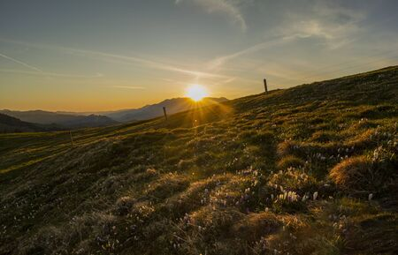 Sunrise over Emmental with crocus flowers Stock Photo - 147775673