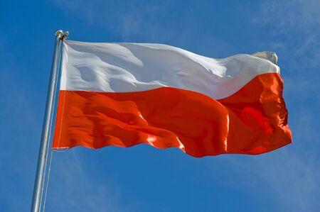 bandera de polonia: Bandera de polaco en un polo contra el cielo azul