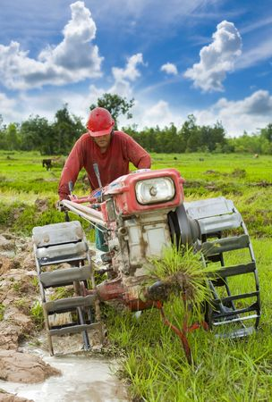 field of thai: hard working farmer preparing the ground for the growth of rice in the north east of thailand