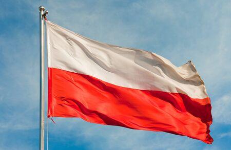 polish flag: polish flag on a pole over beautiful sky