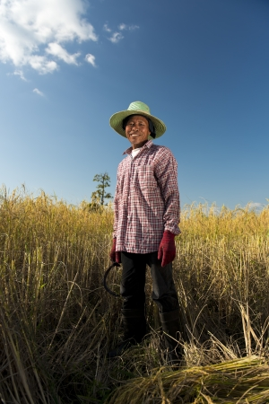 field of thai: full body portrait of a thai rice farmer