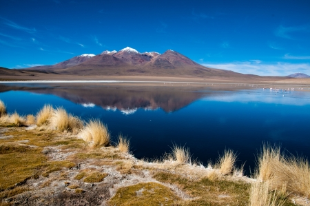 Blue Lagoon in Bolivia photo
