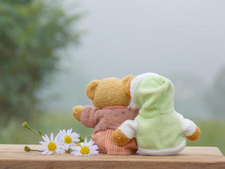 bear doll: Bear doll in winter