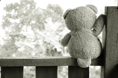 sit: Teddy bear sit alone