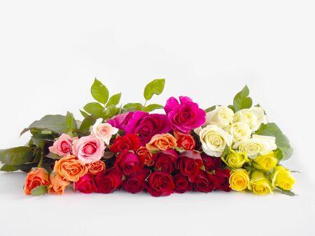beautifu: Beautifu l rose flower background