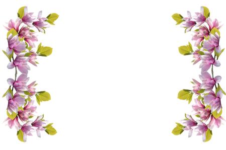 Magnolia flower bouquet isolated on white background. Banco de Imagens