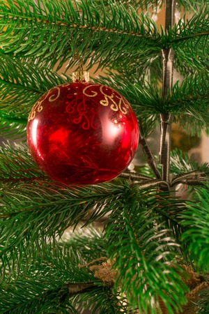 A Christmas tree decorated with a red glass ball. A transparent New Years ball. Beautiful Christmas background.