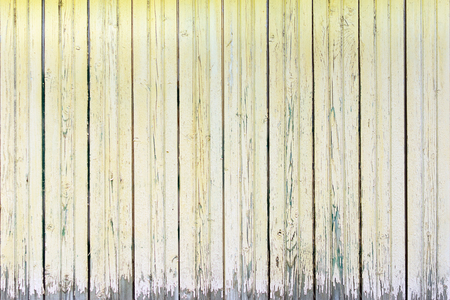 Texture of an old fence of boards. Worn wood surface with peeling pale yellow paint. Blank background.