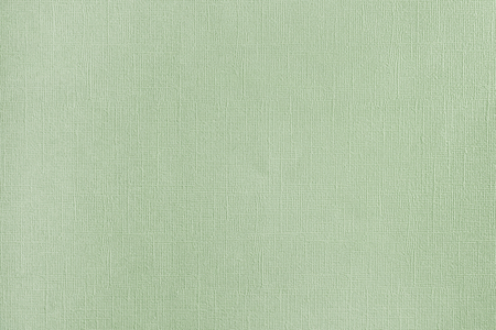 Abstract background for layouts. Texture of dense, light green embossed paper.