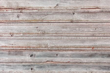 Wood Texture Background Coming from Natural Tree. Wooden Backdrop for Design from Old Weathered Horizontal Logs with Knots. Light Faded Stained Plank Surface. Hardwood Material Pattern