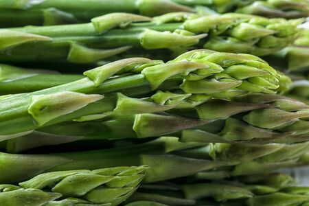 Green asparagus closeup. Fresh young plant.