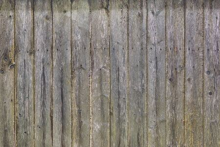The structure of an old wooden fence. Worn boards with mold and rusty nails. Background for sites and layouts.