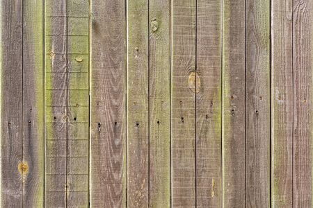 Smooth vertical brown-green boards. The structure of the wooden fence. Background for sites and layouts.