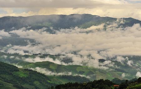The white fog cover the green mountain, Chianrai, Thailand photo