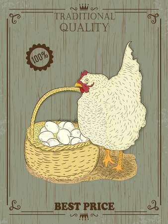 aviculture: colorful Chicken with eggs. Vector illustration. Vintage