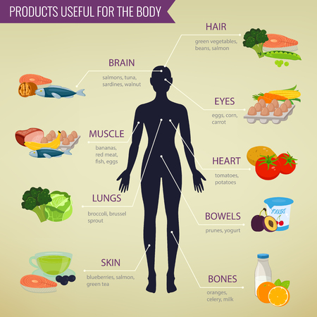 processed food: Healthy food for human body. Healthy eating infographic. Food and drink. Vector illustration