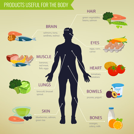 processed grains: Healthy food for human body. Healthy eating infographic. Food and drink. Vector illustration