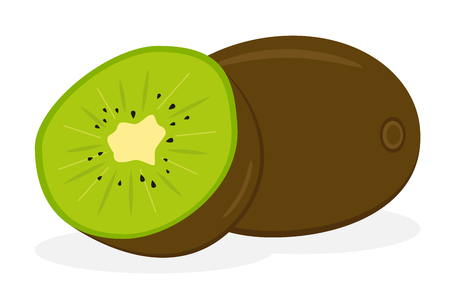 Kiwi fruit icon. Isolated fruits and vegetables. vector Illustration