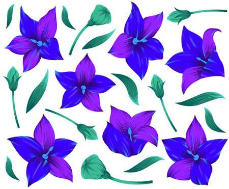 Modern flower design for print. Floral design concept. Vector illustration