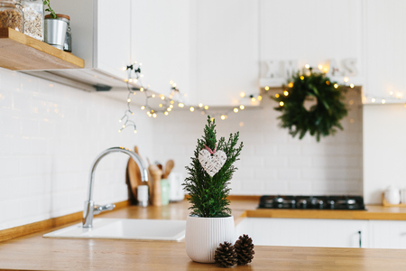Small Christmas tree in white flower pot white modern kitchen scandinavian style decorated for Christmas background. Cypress, Chamaecyparis lawsoniana Ellwoodii