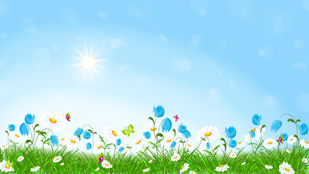 Flying butterflies and colorful flowers field.Green grass and colorful spring flowers. Vector