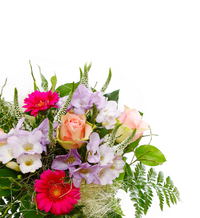 flor violeta: Ramo de flores aislado en la tarjeta background.Birthday rosa blanca. Foto de archivo