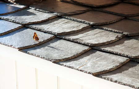 slate roof: Small colorful butterfly on black slate roof tiles. Stock Photo