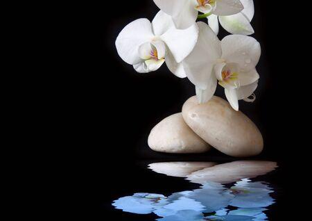 peace plan: Spa treatment massage stones.