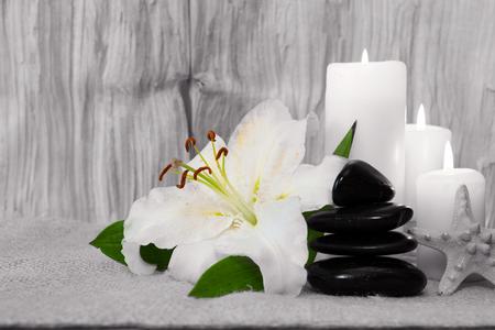 white lily: Composici�n belleza con el lirio blanco.