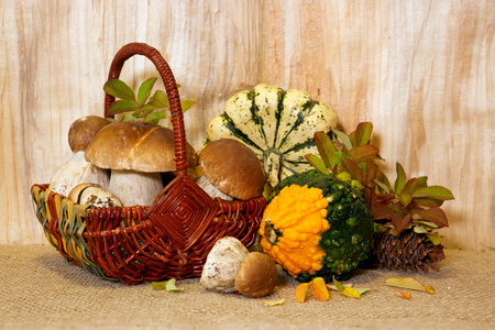 Basket full of  iporcini mushrooms  solated on wood background.Fresh Stone  mushrooms  and vegetables.