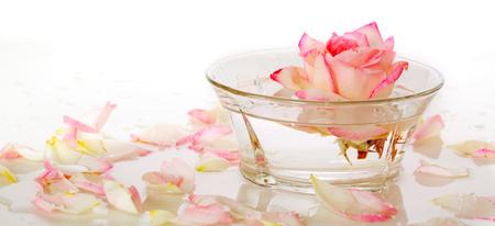 florecitas: Agua con p�talos de rosa infundido en una reflexi�n rosa blanca en un recipiente con agua y p�talos. Foto de archivo