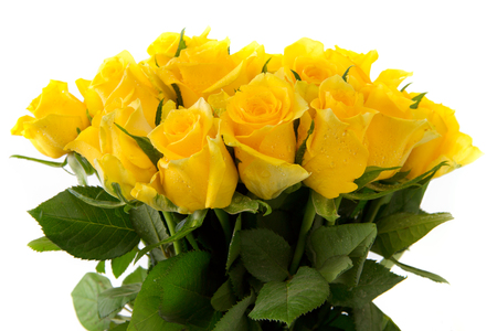 Yellow  rose  bouquet isolated on white background.