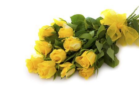 isolated on yellow: Yellow  rose  bouquet isolated on white background.
