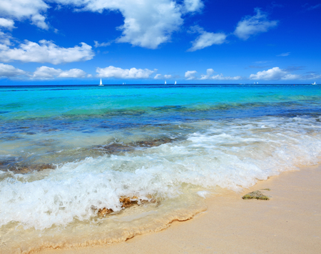 sommer: Beautiful caribbean sea and blue sky .Sommer ocean landscape as background.