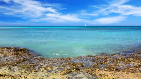 Beautiful caribbean sea and blue sky .Sommer ocean landscape as background.Caribbean sea and rock stones. Stock Photo