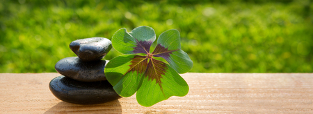Black spa stones and four leaf clover isolated on green background.