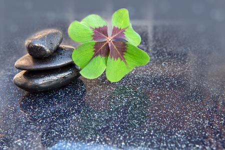is green: Black spa stones and four leaf clover .