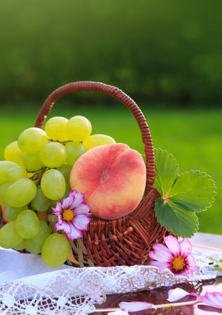 Fruit basket isolated on green background. Stock Photo