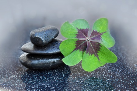 tradition: Black spa stones and four leaf clover .