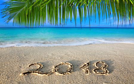 Iscrizione 2018 del nuovo anno scritta e mar dei Caraibi con la palma verde. Archivio Fotografico - 89109703
