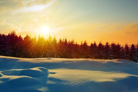 Snowy winter Christmas Landscape.Winter sunset over the snow-covered trees.