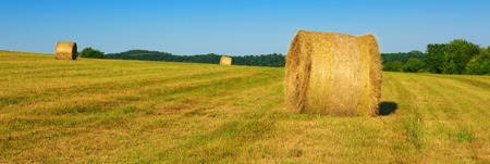 Hay bales in the suni day. Stock Photo
