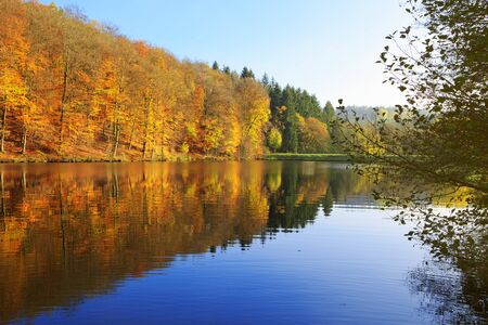 Reflection autumn colorful trees in the forest lake. Foto de archivo - 133570178