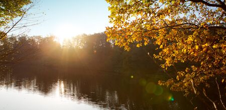 Colorful beech leaves on the sun and forest lake. Foto de archivo - 133570182