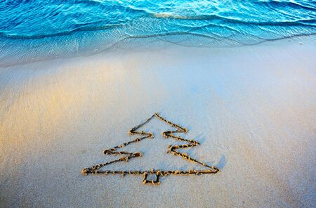 Fir tree drawing on the sand near the sea . Christmas background.