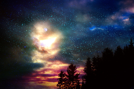 Colorful night sky with many stars above of trees silhouette. Stock Photo