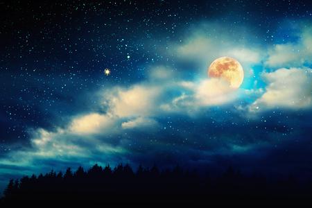 Paisaje con árboles negros y luna llena. Cielo nocturno oscuro. Foto de archivo